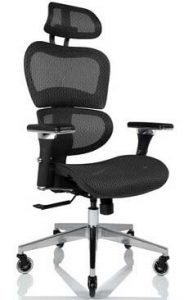 NOUHAUS Ergonomic Office Chair